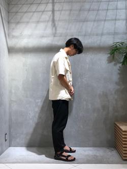[橋本 大知]